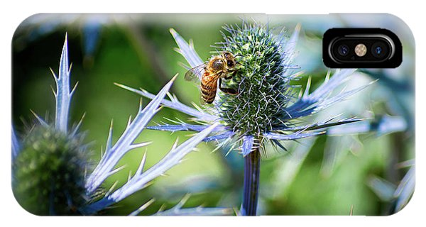 Bee's Got The Blues IPhone Case