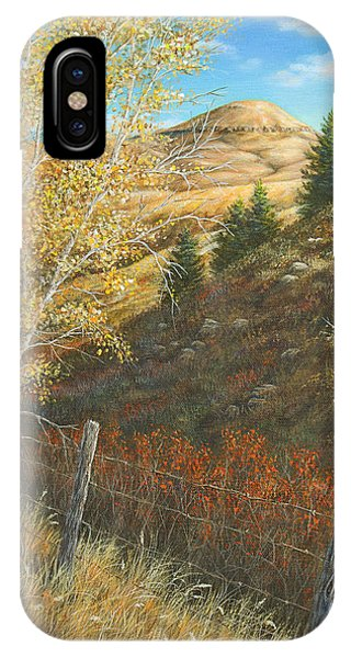 Belt Butte Autumn IPhone Case