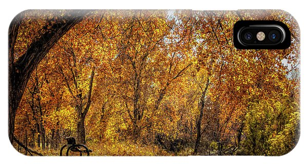 Bench With Autumn Leaves  IPhone Case