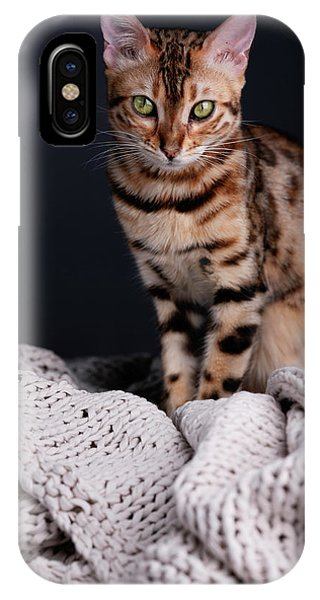 Nice iPhone Case - Bengal Cat Portrait by Nailia Schwarz
