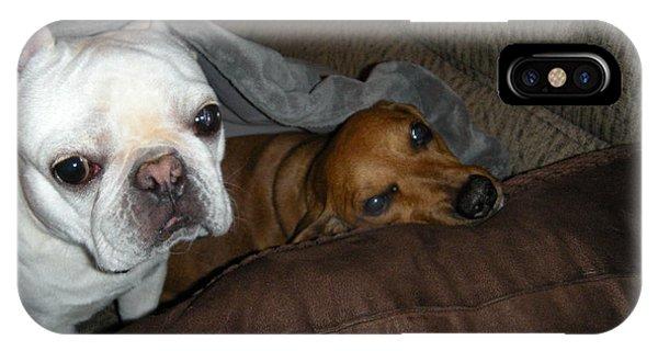 French Bull Dog iPhone Case - Best Friends by Barbra Telfer