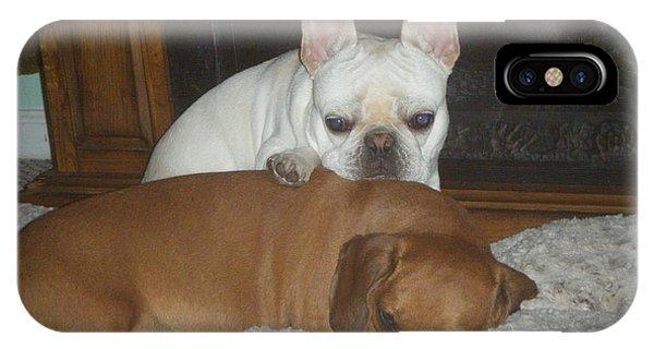 French Bull Dog iPhone Case - Best Friends Forever by Barbra Telfer