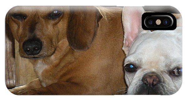 French Bull Dog iPhone Case - Besties by Barbra Telfer