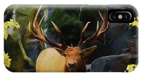 Big Buck 81619 IPhone Case