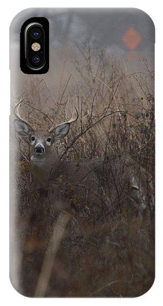 Big Buck IPhone Case