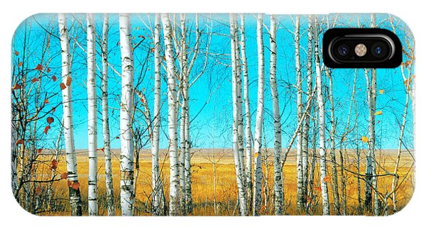 Deciduous iPhone Case - Birch Grove by Vangert