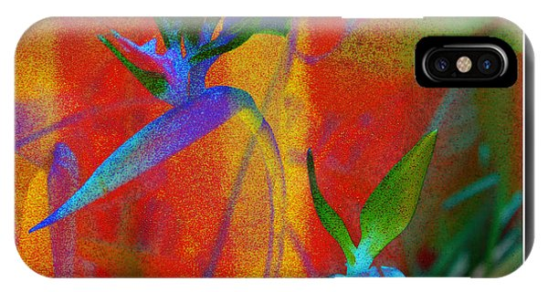 iPhone Case - Bird Of Paradise Creative With Border by Carol Groenen