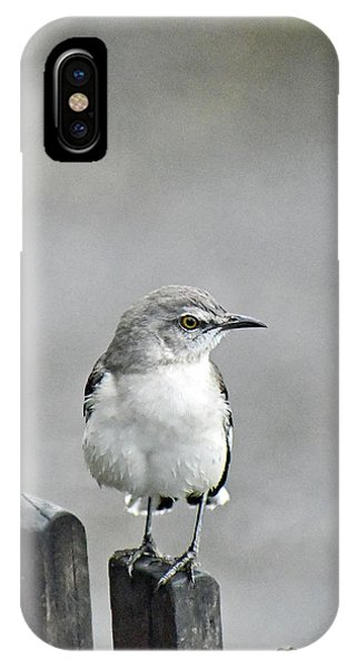 Bird Of Strawberry Hill IPhone Case