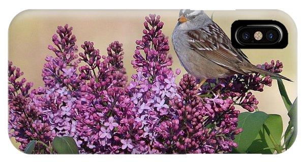 iPhone Case - Bird On Lilac Flowers by Carol Groenen