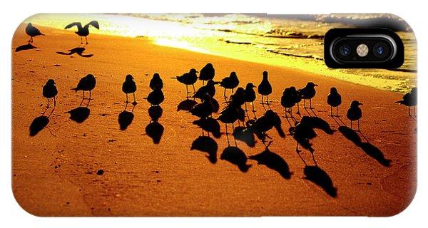 Bird Shadows IPhone Case