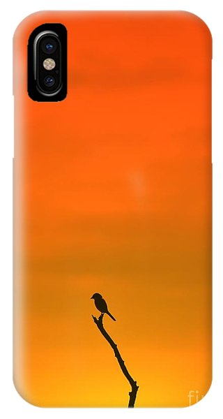 Harmony iPhone Case - Bird Silhouette - Wildlife Background - by Stacey Ann Alberts