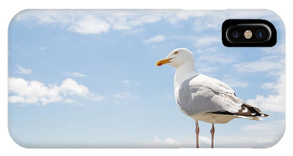 Columns iPhone Case - Birds And Wildlife Concept - Seagull On by Syda Productions