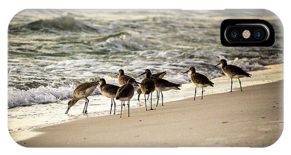 IPhone Case featuring the photograph Birds On The Beach by Doug Camara
