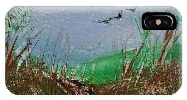Birds Over Grassland IPhone Case