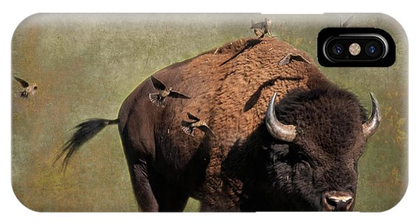 Bison And Friends IPhone Case