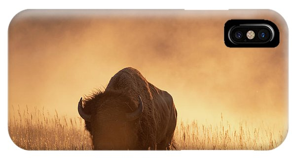 Bison In The Dust 2 IPhone Case