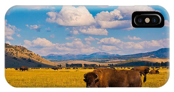Cloudscape iPhone Case - Bison Paradise In Yellowstone National by Lorcel