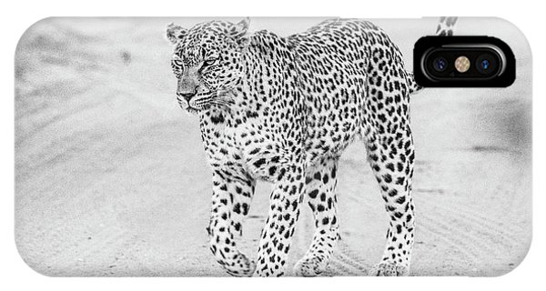 Black And White Leopard Walking On A Road IPhone Case