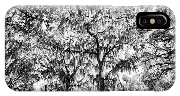 Black And White Of Live Oaks Draped Phone Case by Adam Jones