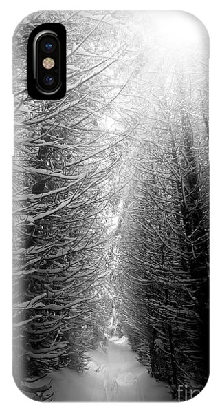 Serenity iPhone Case - Black And White Winter Forest, Vertical by Ssokolov