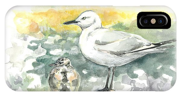 Black-billed Gull Family IPhone Case