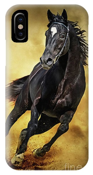 IPhone Case featuring the photograph Black Horse Running Wild by Dimitar Hristov