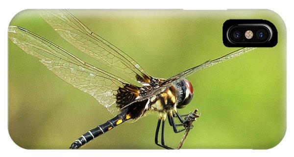 Black Saddlebags Dragonfly IPhone Case