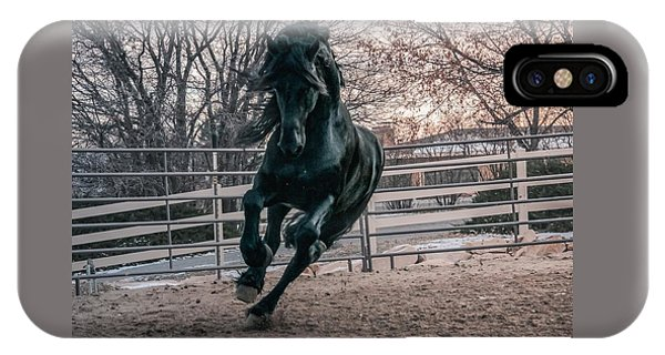Black Stallion Cantering IPhone Case