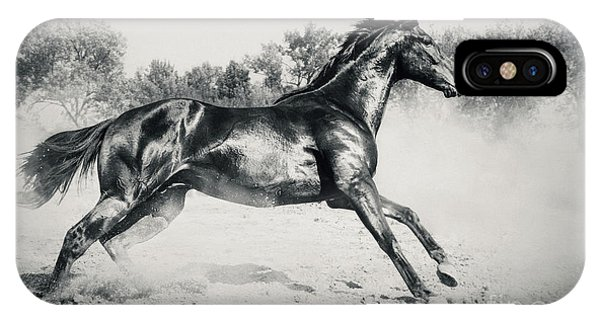 IPhone Case featuring the photograph Black Stallion Horse by Dimitar Hristov