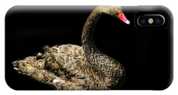 Black Swan On Black  IPhone Case