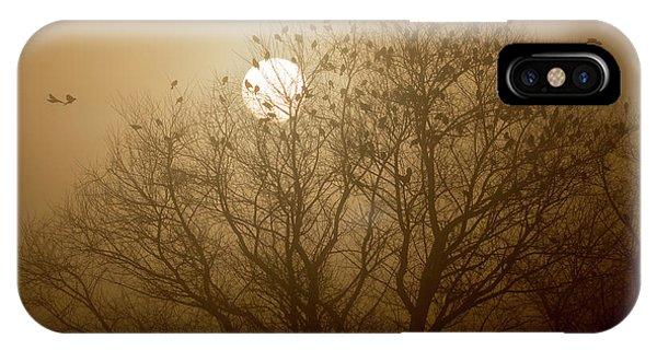 Blackbird Sunrise IPhone Case