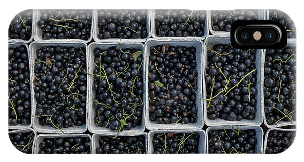 Blue Berry iPhone Case - Blackcurrants by Tim Gainey