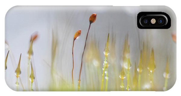 Blooming Moss IPhone Case