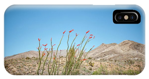 Blooming Ocotillo IPhone Case