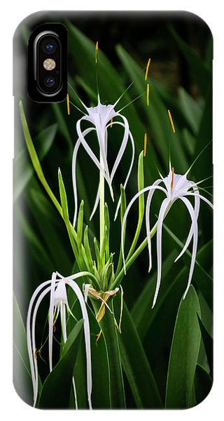 Blooming Poetry 4 IPhone Case