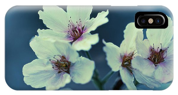 IPhone Case featuring the photograph Blossoming - Flower Photography by Melanie Alexandra Price