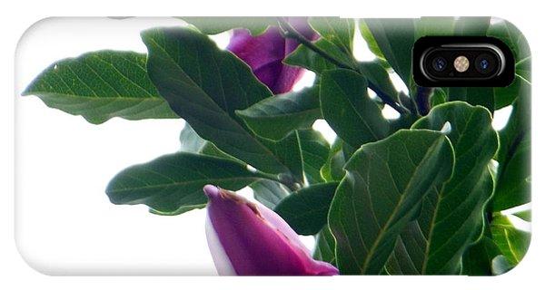 Blossoming Magnolias IPhone Case