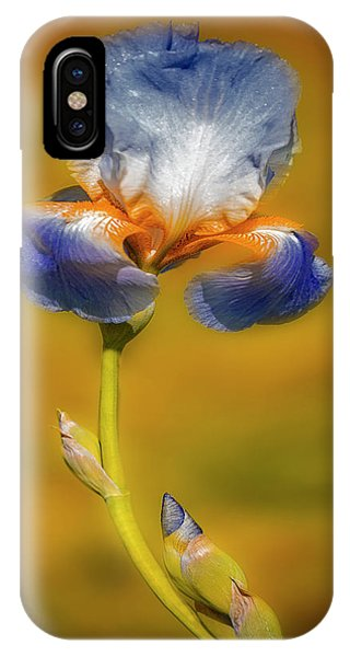 iPhone Case - Blown By The Wind by Susan Candelario