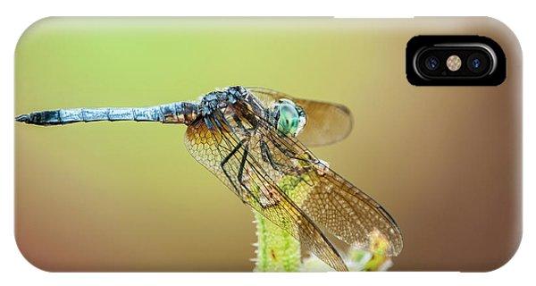 Blue Dasher IPhone Case