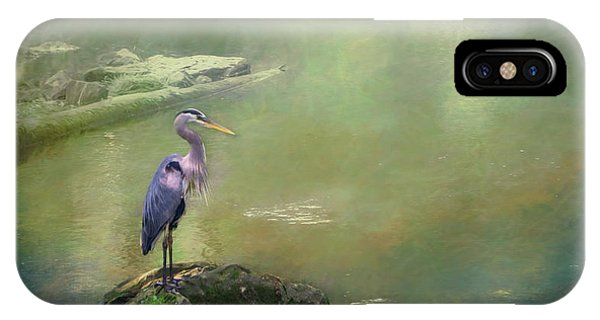Blue Heron Isolated IPhone Case