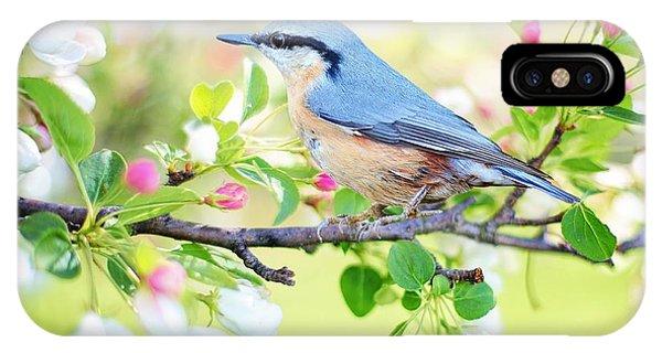 Blue Orange Bird IPhone Case