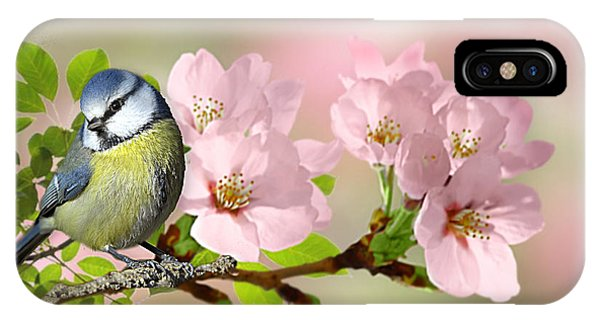 Blue Tit On Apple Blossom IPhone Case