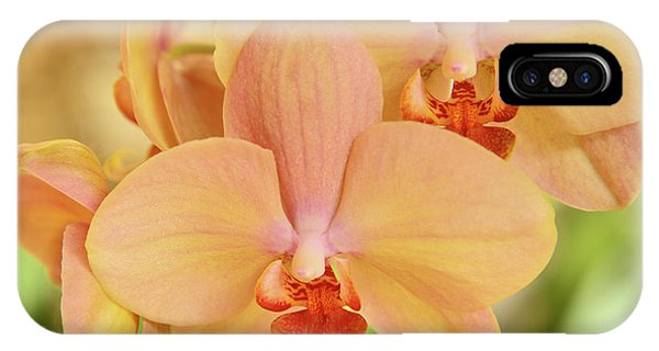 iPhone Case - Blushing Orchids by Kathy Yates