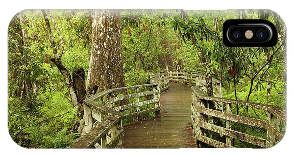 Bald Cypress iPhone Case - Boardwalk Through Swamp And Bald by Adam Jones