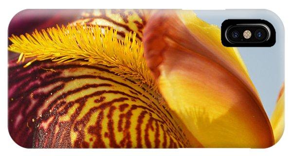 Patriotic iPhone Case - Bordeaux Iris Flower - Close-up by Sattva78