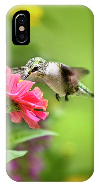 Humming Bird iPhone Case - Botanical Hummingbird by Christina Rollo