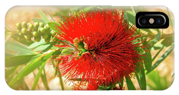 Bottlebrush Bloom IPhone Case