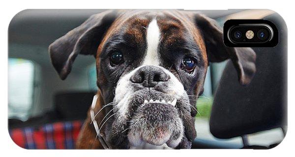 Small Dog iPhone Case - Boxer Dog by Onixxino