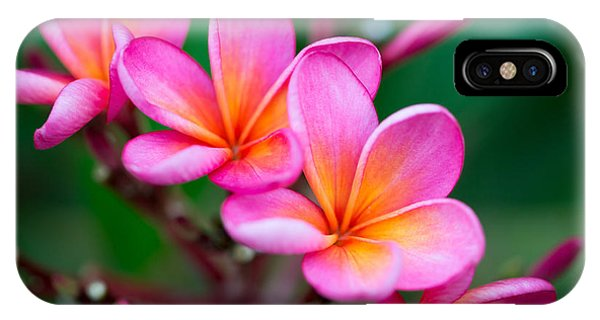 Bouquet iPhone Case - Branch Of Tropical Pink Flowers by Iryna Rasko