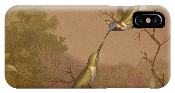 Humming Bird iPhone Case - Brazilian Hummingbirds II by Martin Johnson Heade